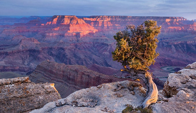 Lipan Point in the Grand Canyon