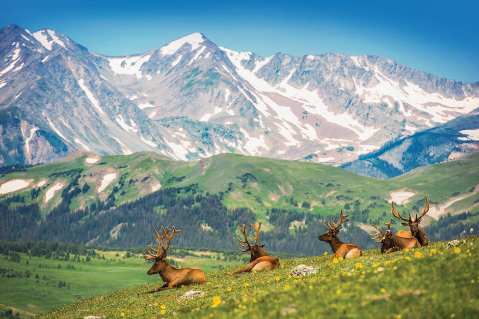 Cover image of the 2019 Colorado National Parks Trip Planner